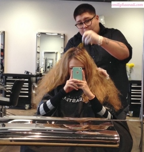 hairbrown2